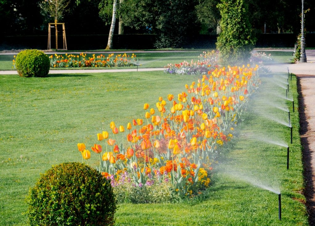 Irrigation for Home Lawn